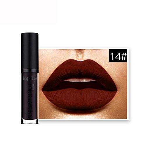 LHWY Waterproof Matte Liquid Lipstick Long Lasting Lip Gloss Lipstick for Women Ladies Girls